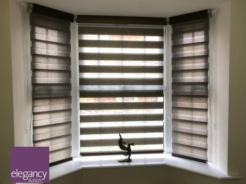 Day and night blinds for bay window
